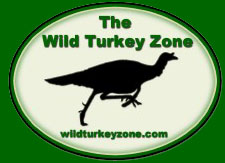 The Wild Turkey Zone Scouting Hunting Locations